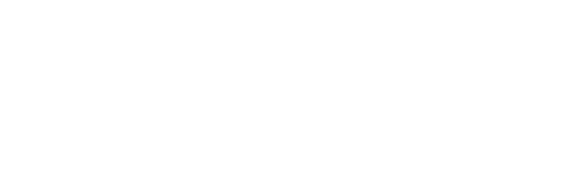 BNL Group logo